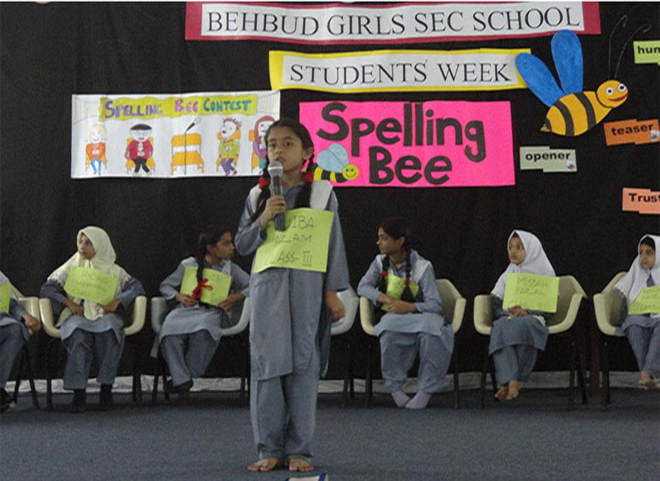 Spelling Bee Comp